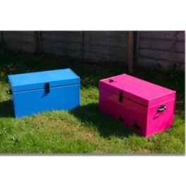 Small Coloured Storage Trunk